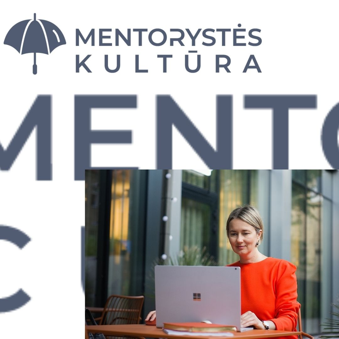 The standards of a mentoring program